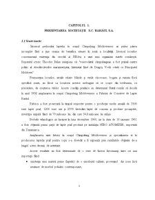 Fundamentarea Economică a Activității de Promovare a Produselor Agroalimentare - Pagina 4