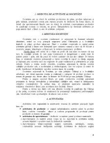 Practica de Specialitate - SC Prodindpest SRL Calarasi - Pagina 4