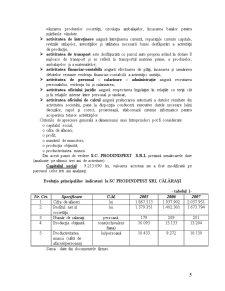 Practica de Specialitate - SC Prodindpest SRL Calarasi - Pagina 5