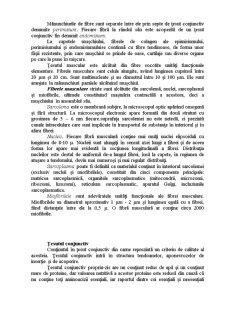 Carnea de Bovine - Pagina 4