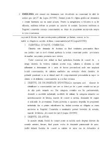 Referat la Drept Comercial - Pagina 4