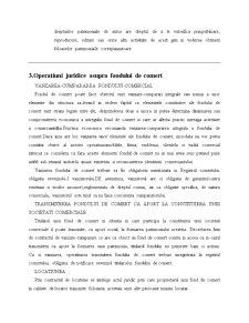 Referat la Drept Comercial - Pagina 5