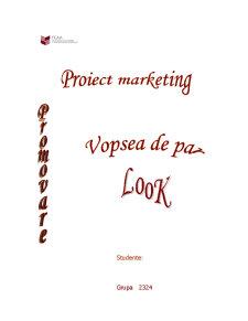Promovarea unui Produs - Vopsea de Par Look - Pagina 1