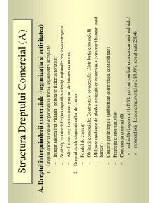 Drept Comercial - Consideratii Teoretice - Pagina 3