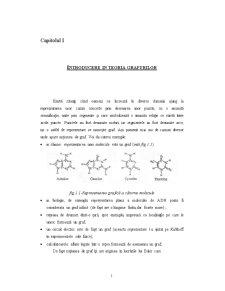 Elemente de Teoria Grafurilor - Pagina 1