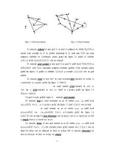 Elemente de Teoria Grafurilor - Pagina 3