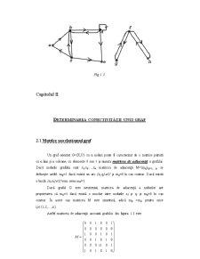 Elemente de Teoria Grafurilor - Pagina 5