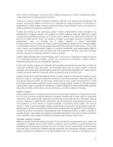 Sistemul Nervos - Pagina 3