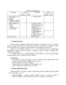Instrumentele Utilizate în Analiza economico-financiară - Pagina 5