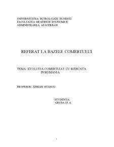 Evolutia Comertului cu Ridicata in Romania - Pagina 1