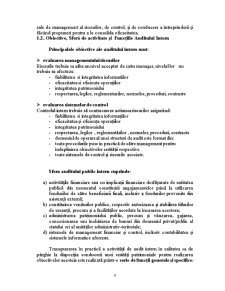 Organizarea Auditului Intern - Pagina 4