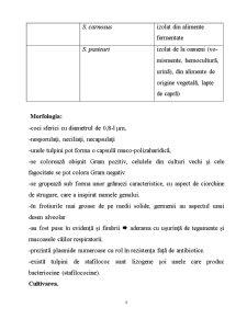 Microorganisme - Pagina 4