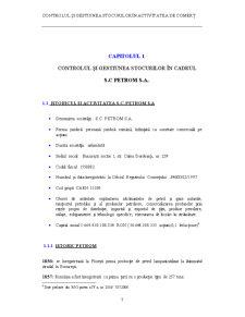 Controlul și Gestiunea Stocurilor în Activitatea de Comerț - Pagina 1