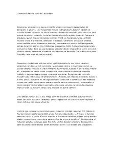 Conservarea Bunurilor Culturale - Pagina 1