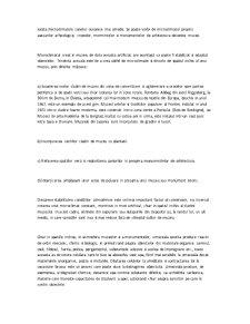Conservarea Bunurilor Culturale - Pagina 5