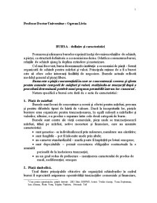 Bursa de Marfuri Sibiu - Pagina 1