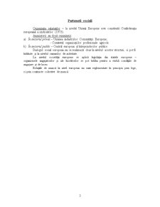 Dreptul European al Muncii - Pagina 3