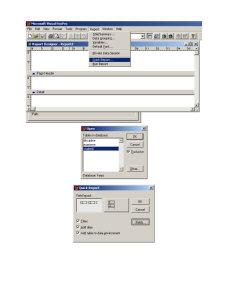 Material Rapoarte și Export Date - FoxPro - Pagina 2