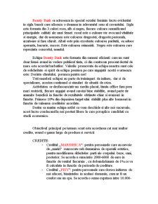 Comunicare Financiar-Bancara - Creare Banca - Pagina 2