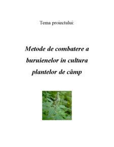 Metode de Combatere a Buruienilor in Cultura Plantelor de Camp - Pagina 1