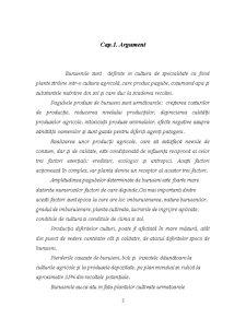 Metode de Combatere a Buruienilor in Cultura Plantelor de Camp - Pagina 3