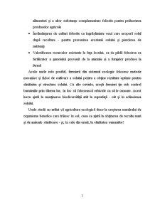 Agricultura Biologica - Ingrasamintele Verzi - Lupinul - Pagina 3