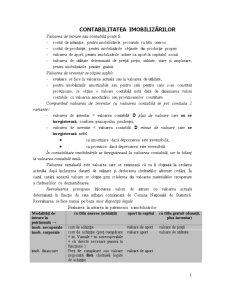 Contabilitatea Imobilizărilor - Pagina 1