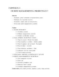 Gestiunea Proiectului - Pagina 2