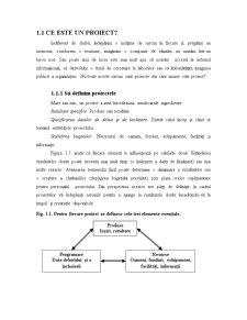 Gestiunea Proiectului - Pagina 3