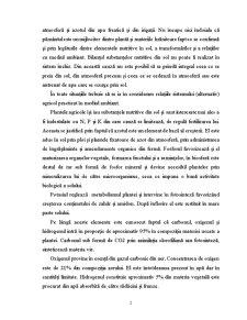 Gunoiul de Grajd - Pagina 3