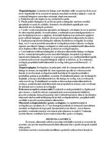 Sistemul Digestiv și Reglarea Lui - Pagina 3