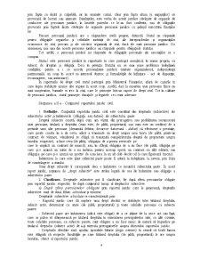 Raportul Juridic - Pagina 4