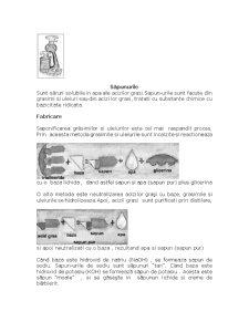 Sapunuri Substante Tensioactive - Pagina 5