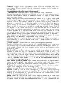 Sistematica Daunatorilor - Pagina 3