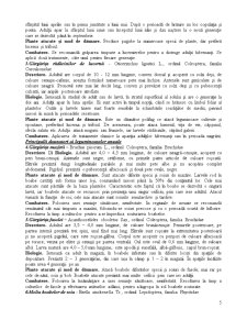 Sistematica Daunatorilor - Pagina 5