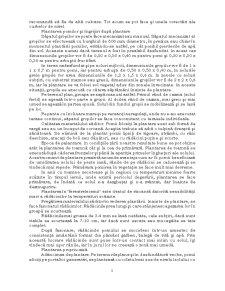 Înființarea unei Plantații Pomicole - Pagina 5