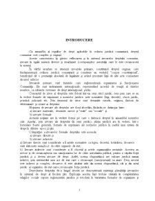 Izvoarele Dreptului Comunitar - Pagina 2