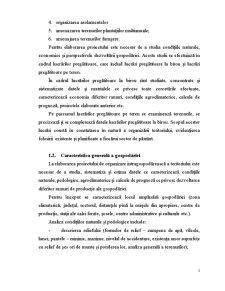Proiectarea Intergospodareasca - Pagina 3