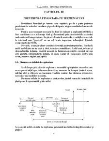 Finantele Intreprinderii - Capitolul 3 - Pagina 1