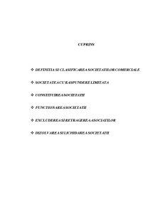 Trasaturile Societatilor cu Raspundere Limitata - Pagina 2