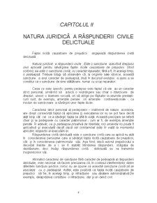 Răspunderea Civilă Delictuală - Pagina 4