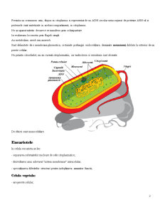 Celula - Pagina 2