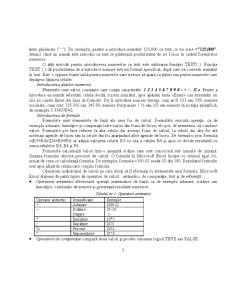 Curs Excel - Pagina 5