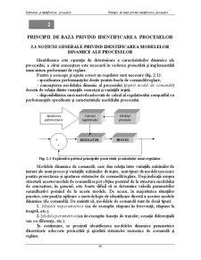 Principii de Bază Privind Identificarea Proceselor - Pagina 1