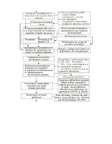 Tehnologia de Obtinere a Vinului - Pagina 3