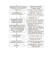 Tehnologia de Obtinere a Vinului - Pagina 4