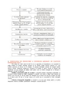 Tehnologia de Obtinere a Vinului - Pagina 5