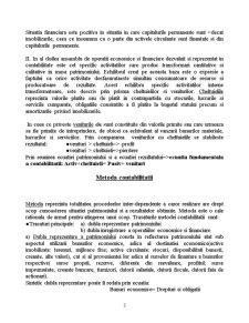 Bazele Contabilitatii - Pagina 3