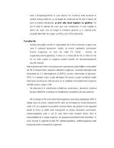 Structura Hematiei - Pagina 5