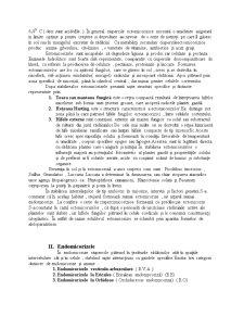 Micorize - Pagina 3